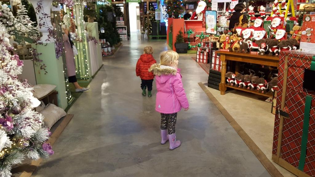 Christmas at the garden centre