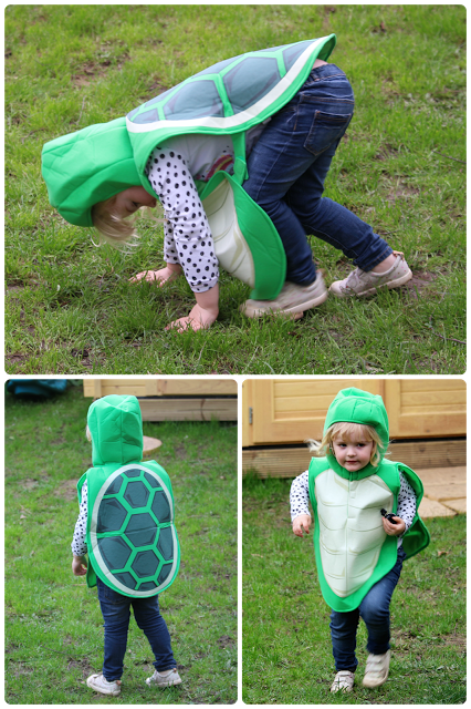 Tortoise costume World Book Day easy costume Pretend to Bee