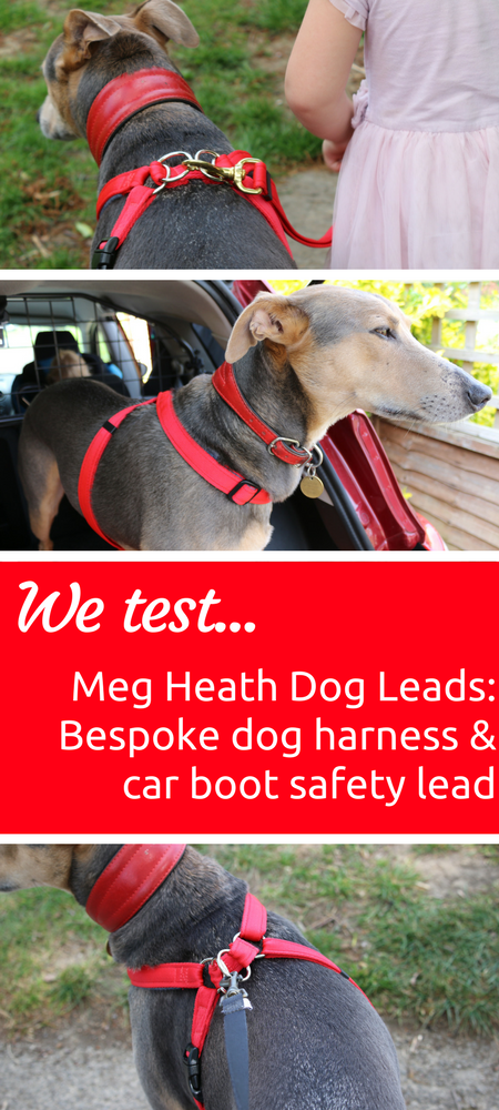 Meg Heath Dog Leads Bespoke dog harness and car boot safety lead review - our lurcher Riker gives it a thorough test #dog #pet #reviews #dogharness #handmade