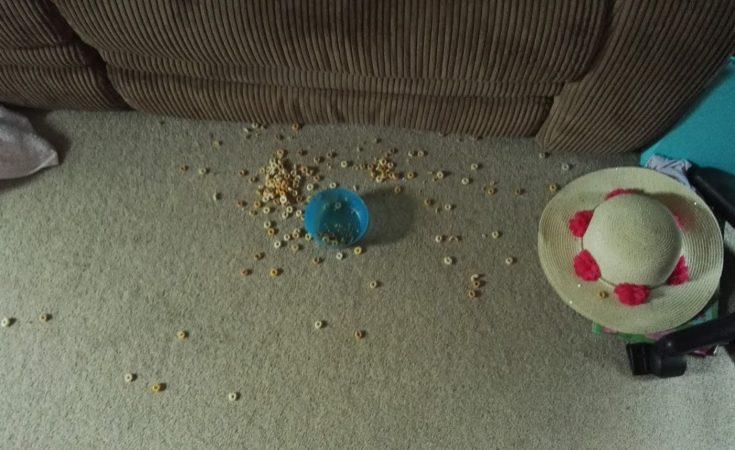 cheerios on floor cherish every moment