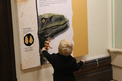 Maidstone Museum dinosaur exhibit - free stuff to do with kids in Maidstone & West Kent