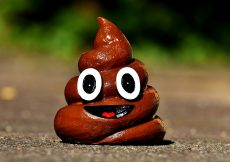 Ten worst poos parents have to deal with