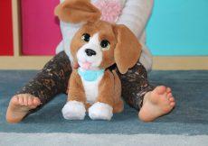 Chatty Charlie the Barkin Beagle 2
