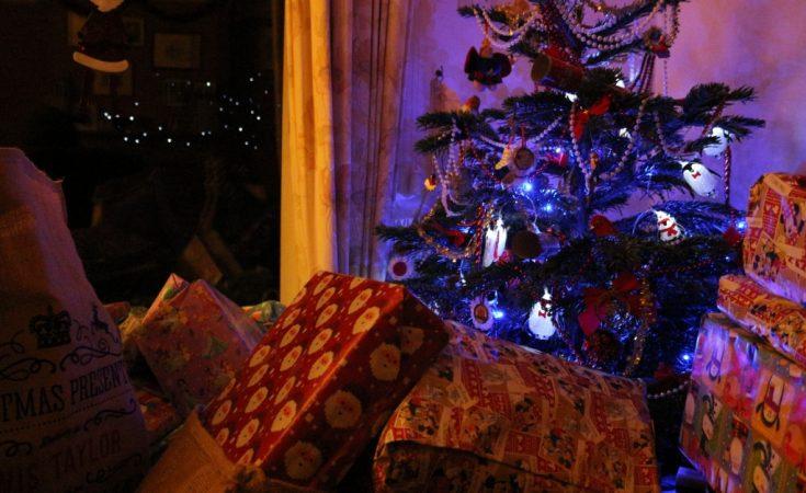 Father Christmas Brookside Garden Centre 2014