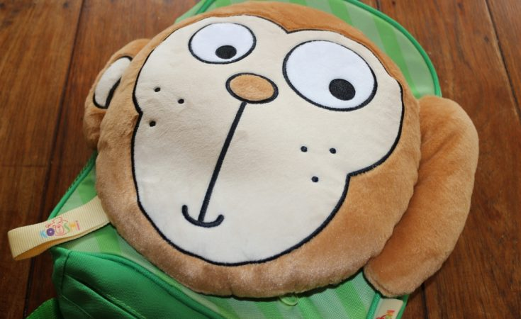Kooshi bag with soft toy pillow