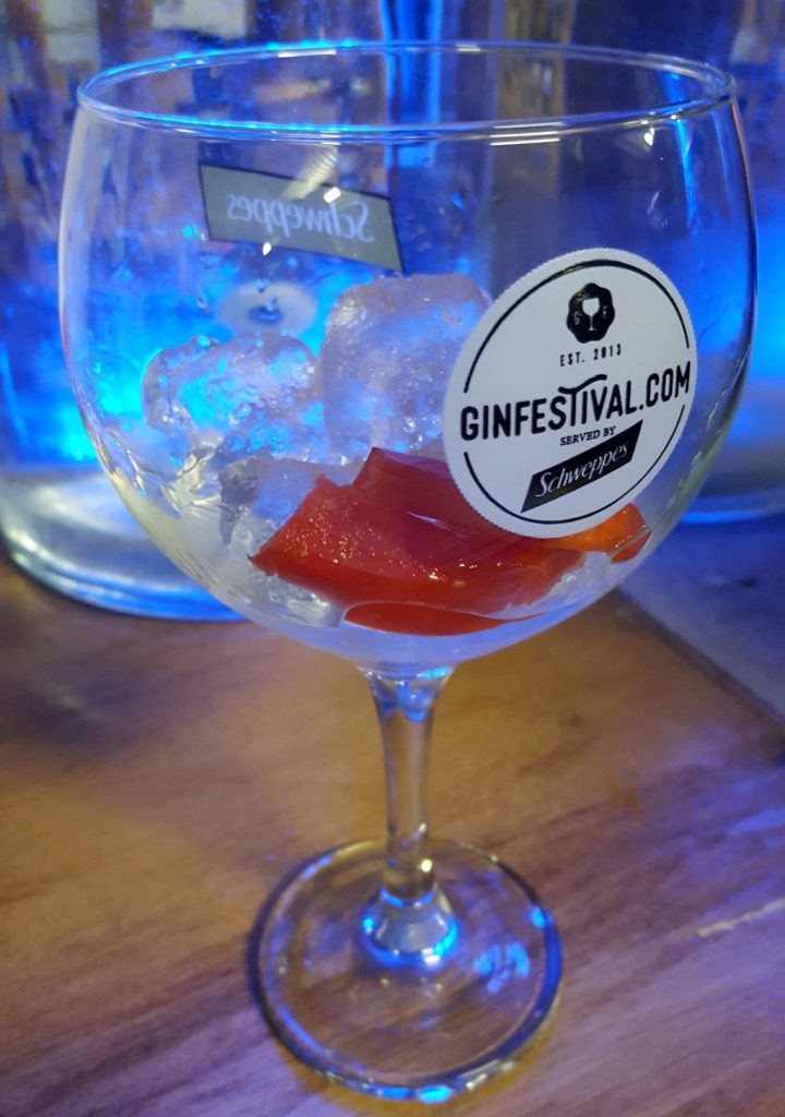 Gin Festival Maidstone - What happens at a Gin Festival and why should I go to one (12)