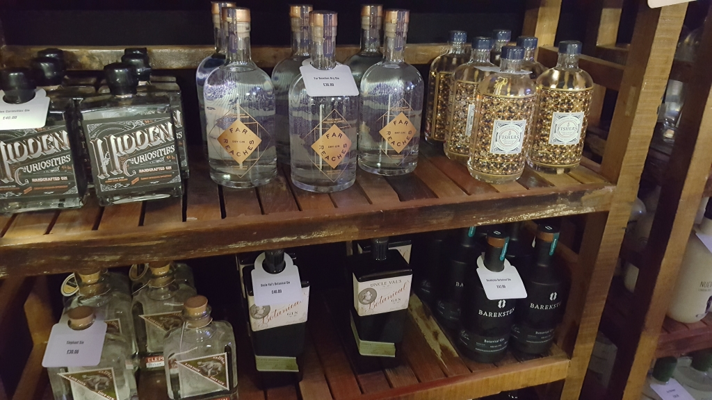 Gin Festival Maidstone - What happens at a Gin Festival and why should I go to one (24)