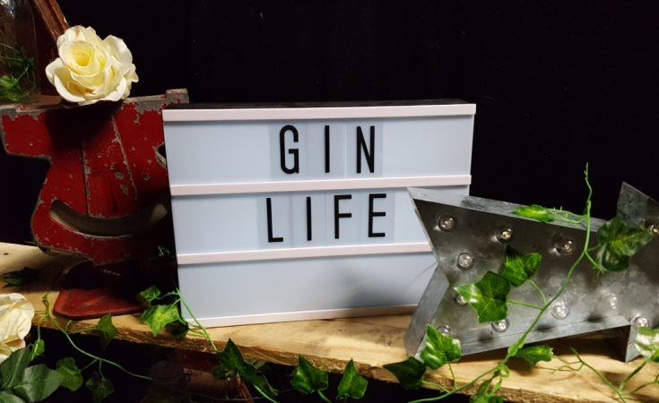 Gin Festival Maidstone - What happens at a Gin Festival and why should I go to one (30)