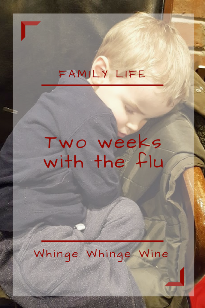 Two weeks of the flu in the family home. Shudder. #momflu #fluseason #familylife #momlife #family #parenting #mumflu The weekend before last, I went out on the Friday night. Nothing fancy; just Wetherspoons so really quite the opposite.  I (predictably) drank too much wine.  The next day, I thought I was actually going to die. Turns out though, it wasn't actually just a massive hangover or lack of sleep (although I am sure it contributed) but something far, far worse.  Despite me very rarely leaving the house without the children, somehow I'd been responsible for contracting something ghastly involving lots of snot, headaches and high temperatures (we'll call it The Plague, I'm not sure that 'flu' sounds bad enough) and bringing it back with me to the family home.
