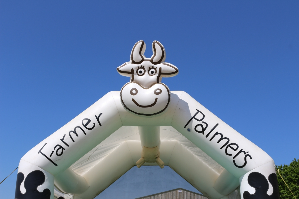 Things to do in Dorset with kids: Farmer Palmer's farm park