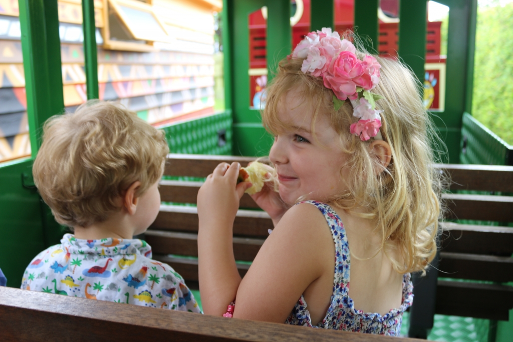 Drusillas Park review - Zoo Alfriston - Train