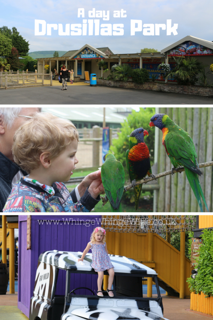 A day out at Drusillas Park, a zoo and family attraction for children with loads to do for under-5s. Zoo animals, a farm, rides and adventure playgrounds! #daysoutuk #daysout #familyattractions Days out and things to do with the kids in East Sussex #familyattractions #Zoos