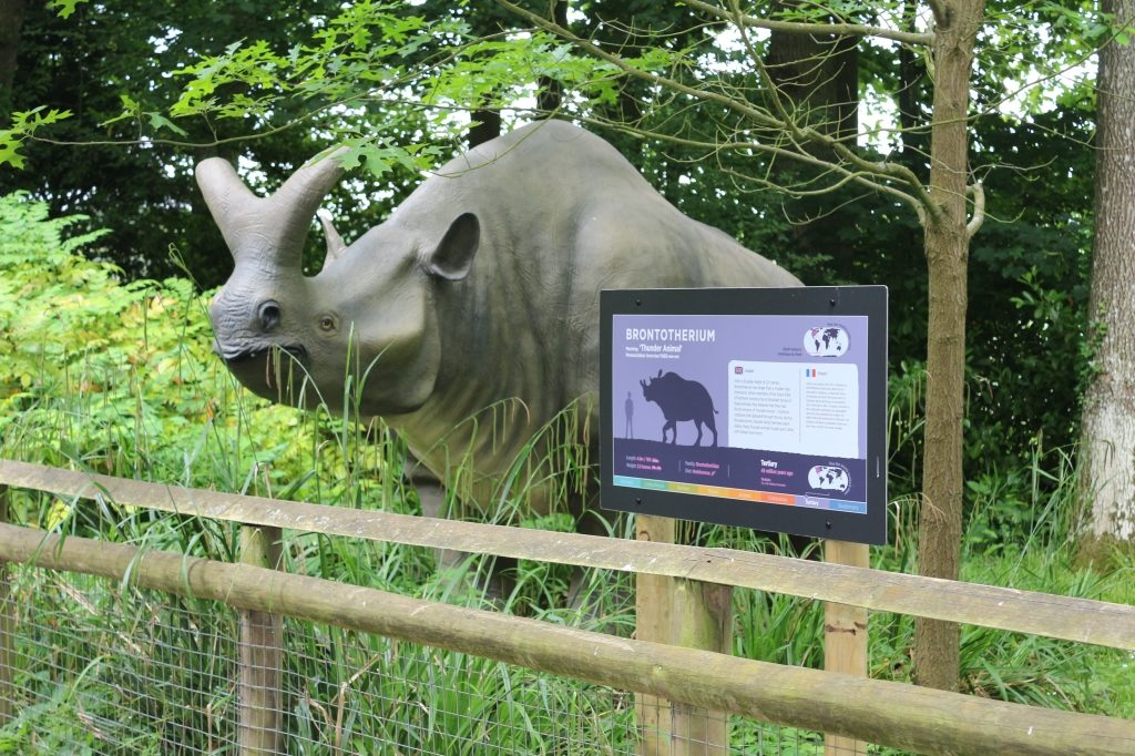 Brontotherium 'Thunder animal' - Howletts Wild Animal Park Animals of the Ice Age