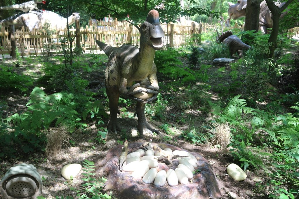 World of Dinosaurs at Paradise Wildlife Park
