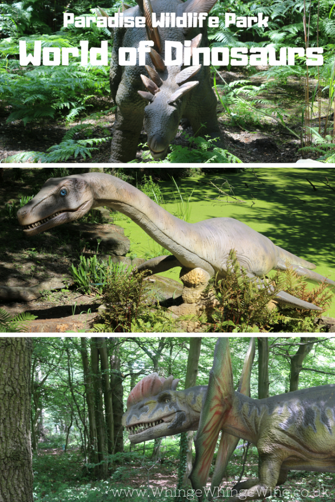 World of Dinosaurs at Paradise Wildlife Park in Broxbourne, Hertfordshire, UK. Dinosaurs in the woods perfect for dino fans little and big! New dinosaur experience close to London #daysout #daysoutwithkids #dinosaurs #zoo #reviews #paradisewildlifepark #dinosaurexperience #thingstodowithkids