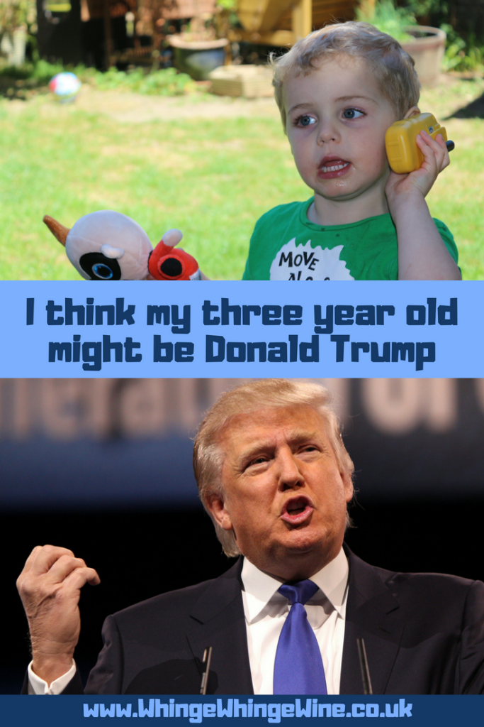 I think my three year old might be Donald Trump: Here are 17 reasons that President Donald Trump is a lot like a preschooler or toddler #trump #donaldtrump #parenting #momhumor #mumhumour #parentinghumour #impeach45 #Toddlertrump #trumptantrums