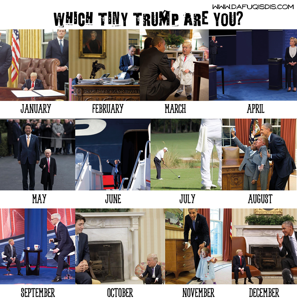 which tiny trump are you meme