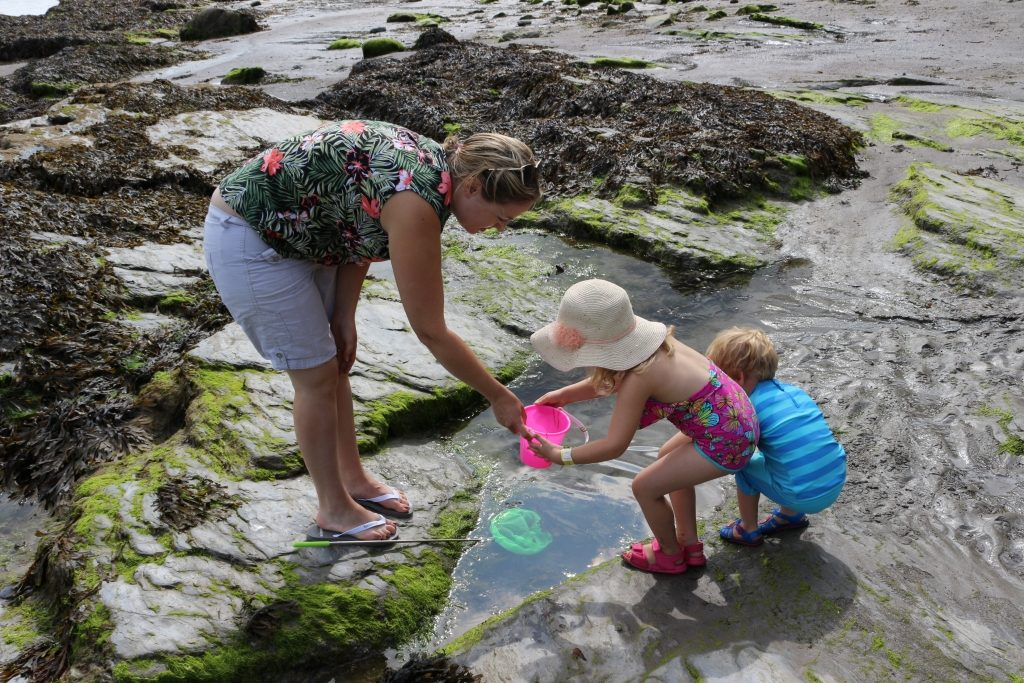 Rockpooling - things to pack for a uk staycation