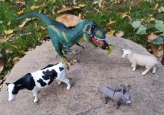 Schleich at Asda T rex and Farm World starter set (3)