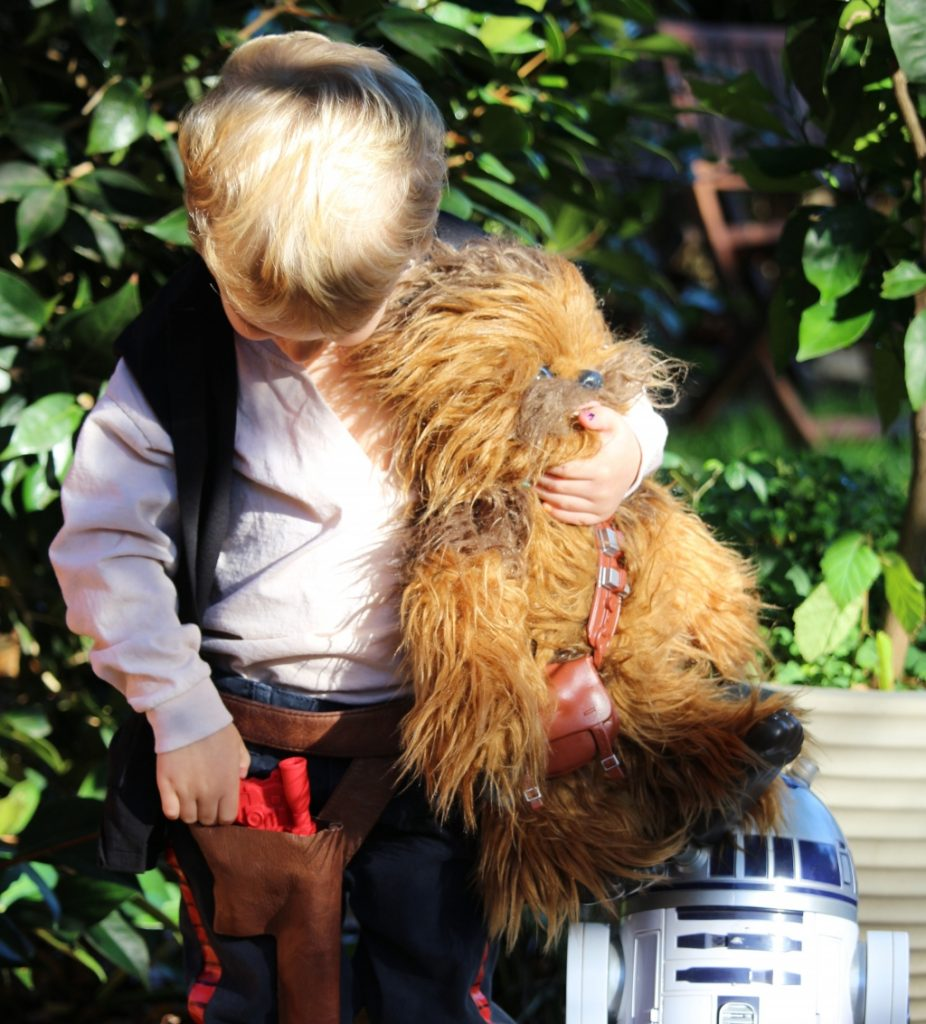 FurReal Hasbro Chewie Ultimate Co-Pilot review (69)