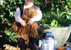 Han Solo children's costume no sew easy (45)