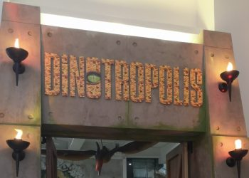 Dinotropolis Bluewater review Dinosaur Soft Play (57)