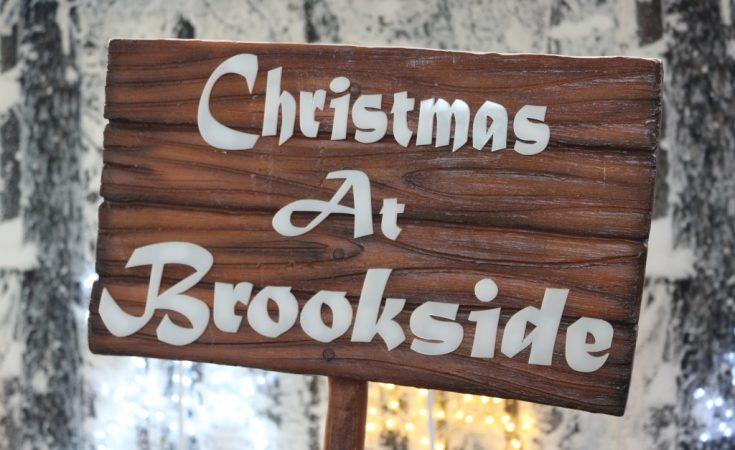 Father Christmas Santa Grotto at Brookside Garden Centre (30)