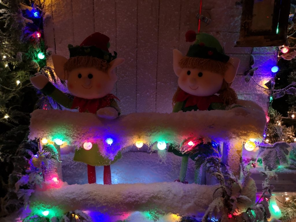 Father Christmas Santa Grotto at Brookside Garden Centre review tour