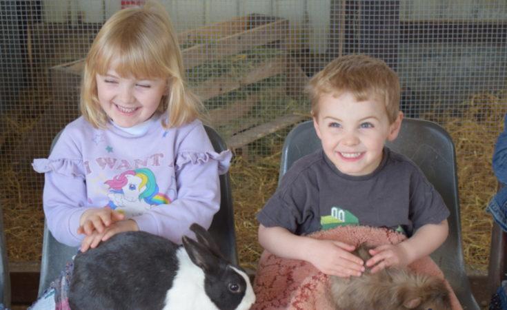 Animal Farm Adventure Theme Park Somerset (23)